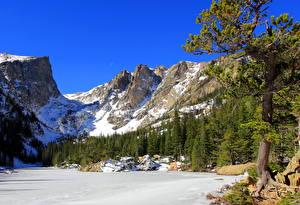 Картинка Парк Гора США Ели Снег Rocky Mountain Colorado Природа