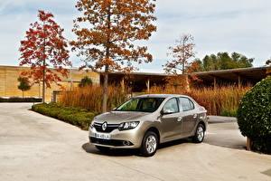 Фотография Renault Деревья 2012 Simbol Авто