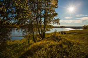 Фотографии Россия Река Побережье Траве Деревьев Солнца Природа