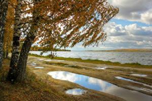 Обои Россия Река Времена года Осень Побережье Лужи Природа