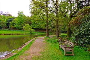 Фотографии Англия Парк Пруд Траве Скамья Charwell Природа