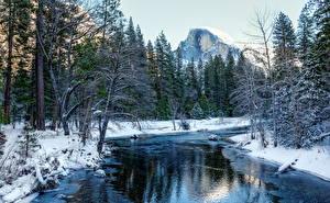 Картинки Зима Парк Реки Леса США Йосемити Снега Природа