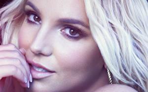 Обои Бритни Спирс Глаза Смотрят Лица Блондинки Нос Красивые Музыка Знаменитости Девушки