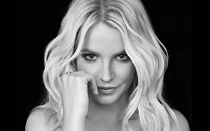 Обои Britney Spears Волосы Лицо Взгляд Музыка Знаменитости Девушки фото