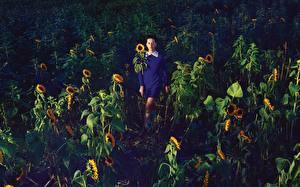 Обои Katy Perry Поля Подсолнухи Музыка Знаменитости Девушки фото