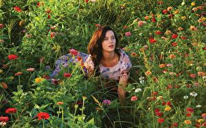 Фотографии Katy Perry Трава Знаменитости Девушки Цветы