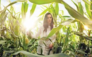Обои Katy Perry Поля Листья Музыка Знаменитости Девушки фото