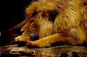 Картинки Большие кошки Львы Животные 3D_Графика