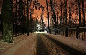 Фото Зимние Парки Москва Дороги Снега Дерево Природа