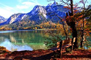 Обои Германия Река Осень Горы Пейзаж Бавария Скамейка Schwangau Природа