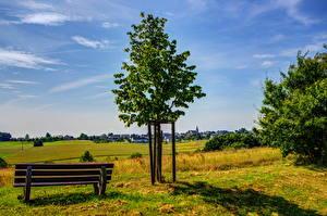 Фото Пейзаж Германия Поля Трава Деревья Скамейка Kliding Природа