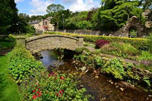 Фотография Англия Река Мосты Кустов Waddington Природа