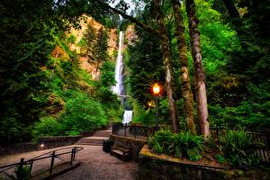 Фото Штаты Парки Водопады Уличные фонари Скамья Деревья Multnomah falls Oregon Природа
