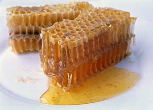 Обои Сладости Мед Крупным планом Пчелиные соты Еда