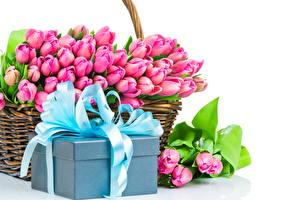 Обои Тюльпаны Праздники Много Подарки Корзина Бантик Цветы