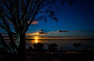 Фотография Австралия Рассветы и закаты Речка Ночь Деревья Port Lincoln Природа