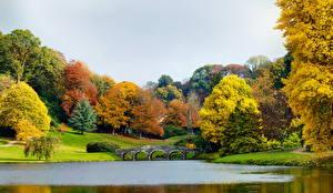 Фотография Англия Парки Речка Мост Пейзаж Дерево Stourhead Природа