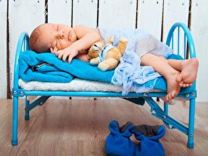 Фотография Мишки Младенца Кровате Дети