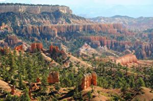 Фотографии Штаты Парки Ель Каньон Bryce Canyon Природа