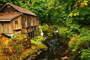Обои Штаты Леса Парки Вашингтон Ручеек Маунт-Рейнир парк Природа