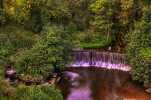 Обои Англия Водопады Реки Лес Кусты river Yarrow Природа