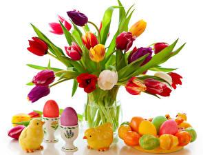 Обои Тюльпаны Праздники Пасха Цыплята Ваза Яйца Цветы