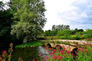 Фотографии Англия Реки Мосты Деревьев Bibury Природа