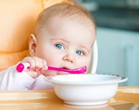Фотография Младенец Ложки Тарелка Лицо Взгляд ребёнок