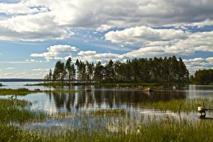 Фотография Швеция Реки Небо Деревья Облака Dalarna Природа