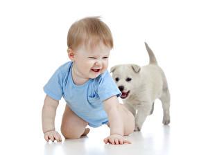 Обои Собаки Грудной ребёнок Щенка Ребёнок
