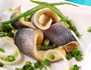 Обои Морепродукты Рыба Лук репчатый Пища