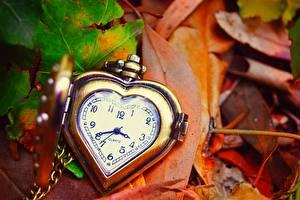 Картинки Часы Карманные часы Крупным планом Листва Сердца