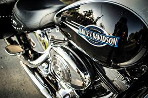 Обои Harley-Davidson Логотип эмблема Мотоциклы фото