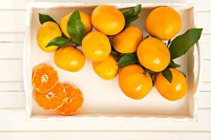 Фотография Мандарины Цитрусовые Пища