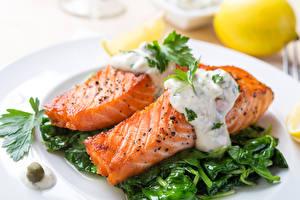 Обои Морепродукты Рыба
