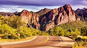 Фотографии Штаты Горы Дороги Кустов Arizona Природа