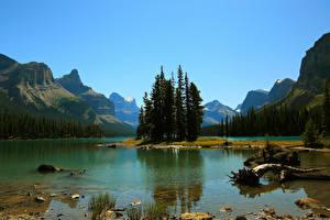 Картинка Канада Парки Озеро Горы Джаспер парк Maligne Lake
