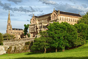 Фотография Испания Дворец Деревья Газон Palacio de Sobrellano Cantabria Города