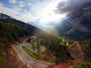 Обои Швейцария Гора Дороги Пейзаж Дерево Maloggia Природа