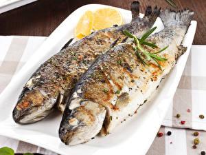 Фото Морепродукты Рыба