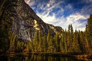 Обои США Парки Горы Йосемити Ель HDR Природа