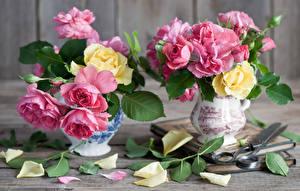 Обои Розы Ваза Лепестки Цветы