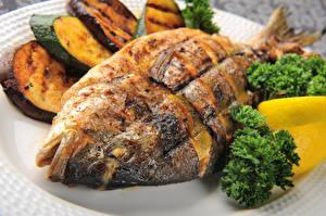 Картинка Морепродукты Рыба Крупным планом Пища