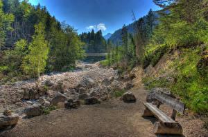 Картинки Пейзаж Леса Скамья Дерево HDR Природа
