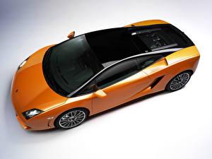 Фотография Lamborghini Тюнинг Оранжевый Сверху Металлик 2011 Gallardo LP560-4 Bicolore Машины