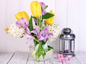 Фотография Альстрёмерия Тюльпаны Гиацинты Ваза Цветы