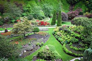 Фотографии Канада Сады Газон Деревья Кусты Butchart Gardens Природа