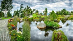 Обои Парки Пруд Ландшафт Кусты Дизайн Природа фото
