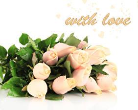 Картинка Розы Букет Праздники цветок
