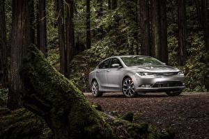 Фотографии Chrysler Леса Серебряная Седан 2015 200 sedan Автомобили